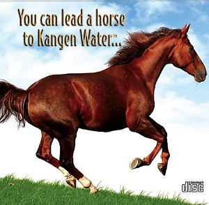 You Can Lead A Horse To Kangen Water CD