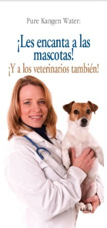 Pets Love It...Vets Love It - SPANISH