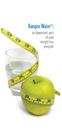 Weight Loss -   Trifold Brochure